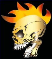 indian skull warrior flamed decal