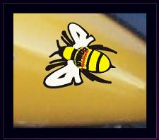 Reflective Safety Bee